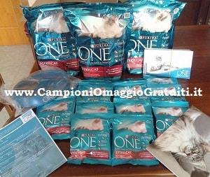 Progetto tester Purina Sterilcat su The Insider