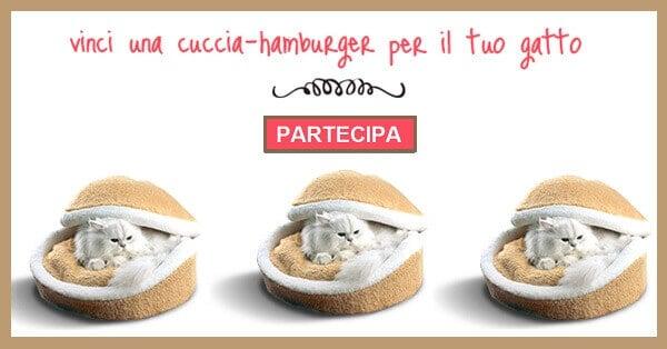 Vinci-una-cuccia-hamburger-Hopet-per-gatti-gratis