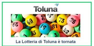 Vinci-fino-a-2.000-euro-con-Toluna