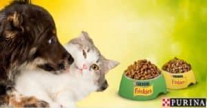 Ricevi-una-confezione-omaggio-di-Friskies-per-gatto-o-per-cane