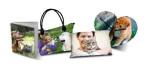 World-Animal-Day-2016-vinci-uno-dei-uno-dei-92-voucher-da-100€