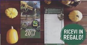 calendario-Olio-Rinaldi-2017
