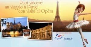Vinci-grais-il-tutù-realizzato-a-mano-di-Felicie-o-un-viaggio-in-Francia