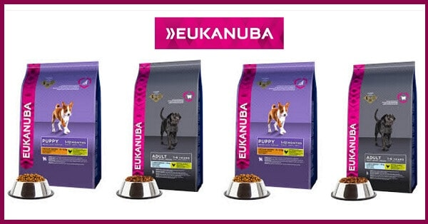 Campioni-omaggio-Eukanuba