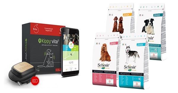 Concorso Vodafone Dog Academy