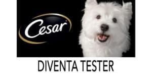 diventa tester cesar per cani su The Insider